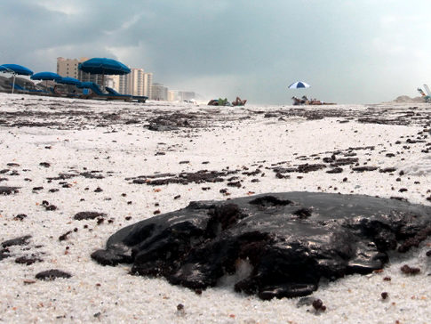 BP Gulf Oil Spill