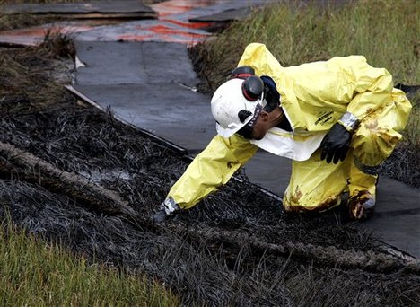 gulf ofmexico oil spill cleanup marshes
