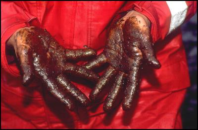 hands gulf of mexico oil spill