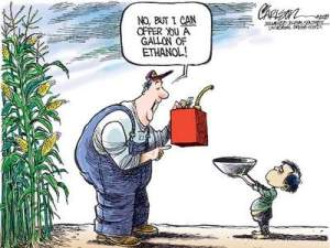 Biofuels World Food Crisis