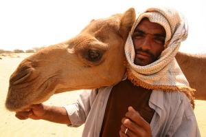Saudi Arabia Camels Oil Sand