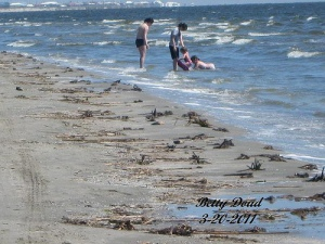Fresh Crude Washing Ashore Elmers Isle Louisiana