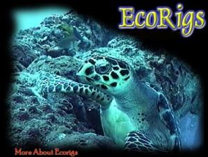 EcoRigs Non-profit Organization