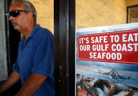 Gulf Seafood Survey Not Safe