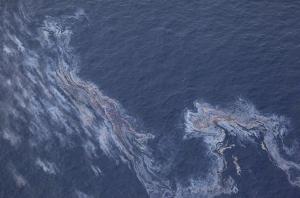 fresh oil seepage