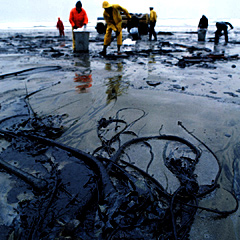 China Oil Spill Seabed Leaks