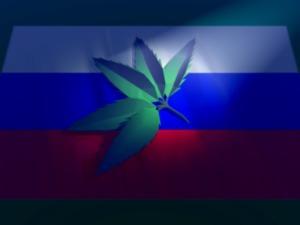 Russian Hemp