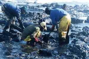 Oil Spill Worker